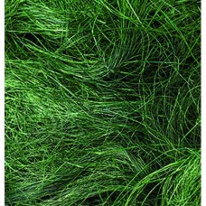 Sisal vlákna Zelená tmavá