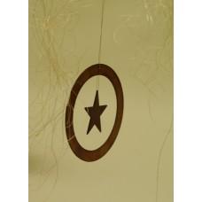 Hviezda v kruhu