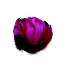 Husacie pero Ružové