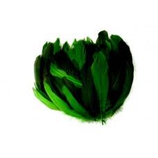 Husacie pero Zelené tieňované