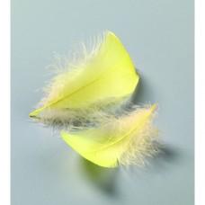 Dekoračné pierka Žltá