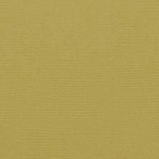 Štruktúrovaný papier Tonic studios Craft perfect Olive green